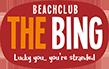 Bing - bbq op het strand